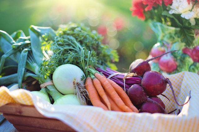 gelecege yatirim yapin saglikli beslenin - SEZGISEL YEMEK VE DIYET