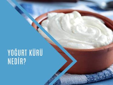 yogurt kuru nedir - Yoğurt Kürü Nedir?