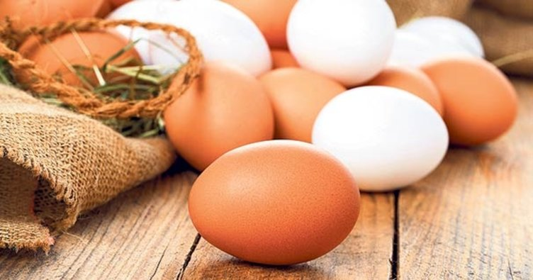 yumurta - YUMURTANIN BEYAZI MI? SARISI MI?