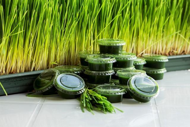 smootox buğday çimi suyu1 1 - BUĞDAY ÇİMİ